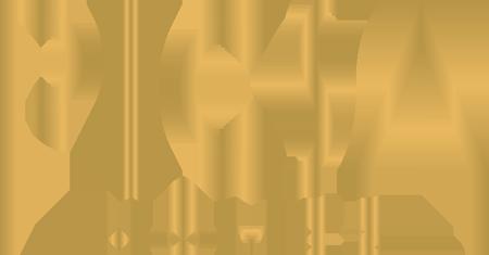 Picsa Homes Logo